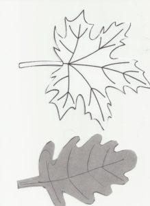 schéma des feuilles à découper